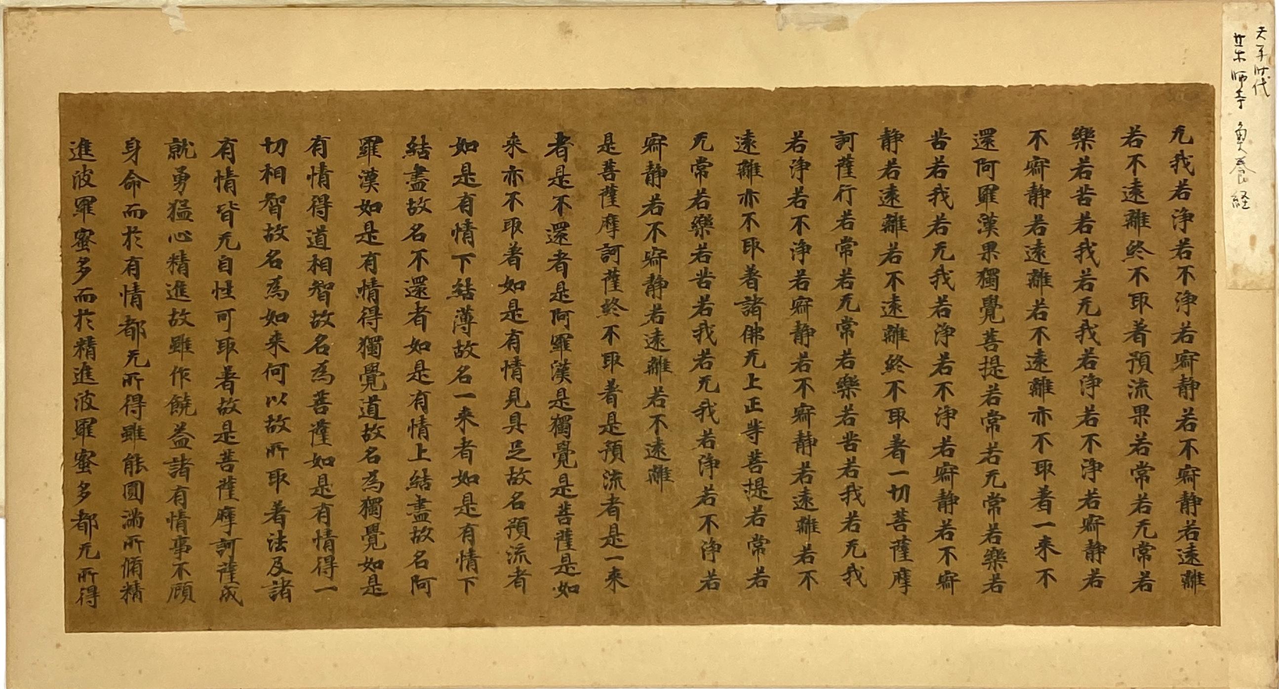 20616八世紀 魚養経 片26.5×57.5cm